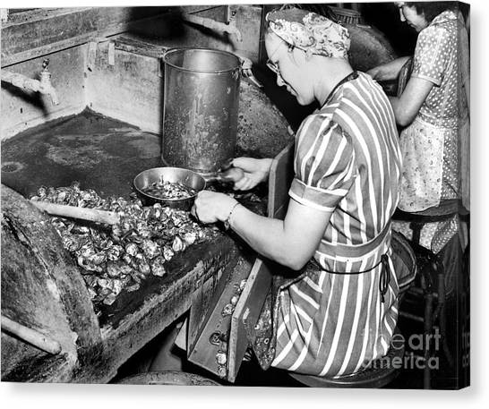 Canvas Print featuring the photograph Oyster Industry Shuckers 1948 by Merle Junk