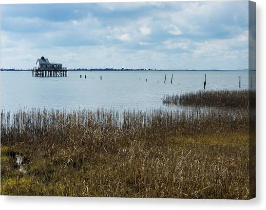 Oyster Shack And Tall Grass Canvas Print