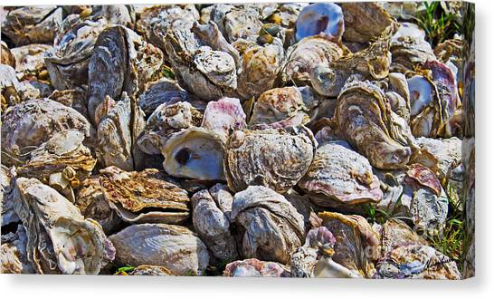 Oysters 02 Canvas Print