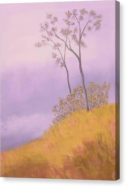 Ozark Glade Canvas Print