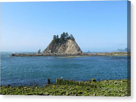 Pacific Coast At La Push Canvas Print