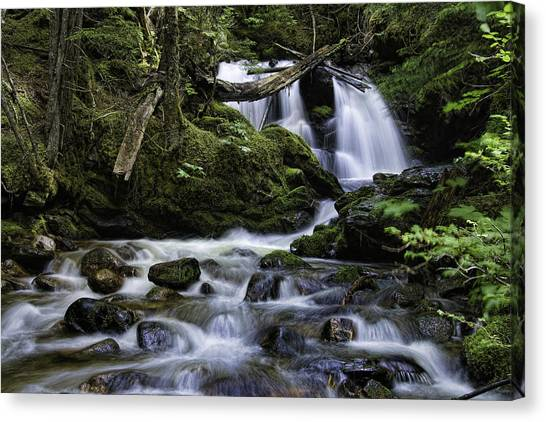 Packer Falls And Creek Canvas Print
