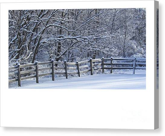 Paddock In Blue Canvas Print