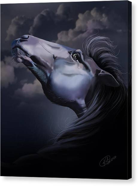 Pain Inside Me Canvas Print