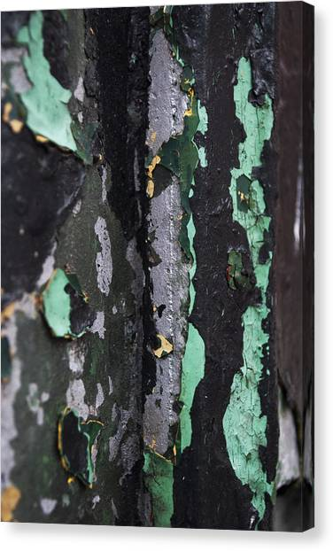 Paint Canvas Print by Gretchen Lally