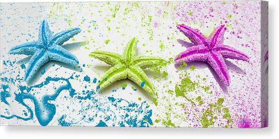 Paint Spattered Star Fish Canvas Print