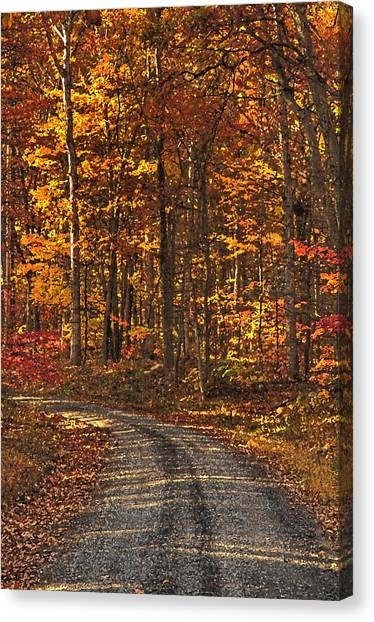 Painted Autumn Country Roads Canvas Print