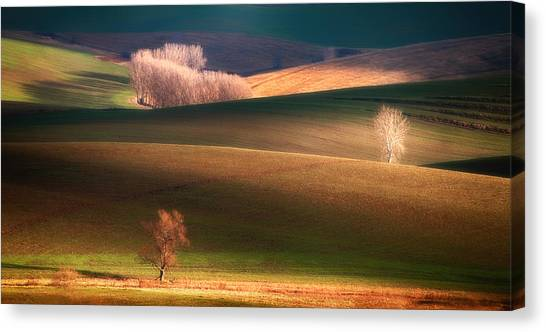 Rolling Hills Canvas Print - Painted By The Light by