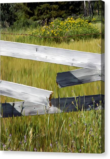 Painted Fence Canvas Print