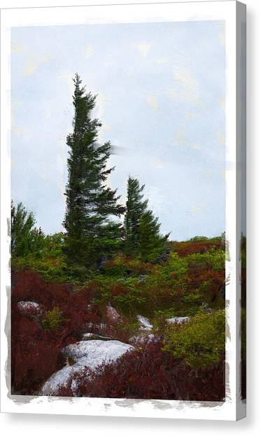 Painted Flagstaff Canvas Print