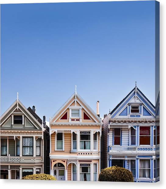 Blue Canvas Print - Painted Ladies by Dave Bowman