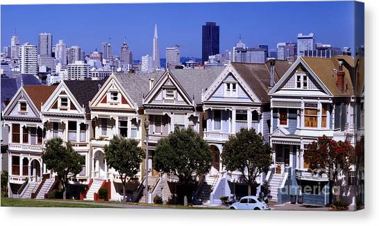 Painted Ladies Canvas Print by Ron Smith