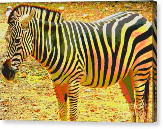 Painted Zebra Canvas Print