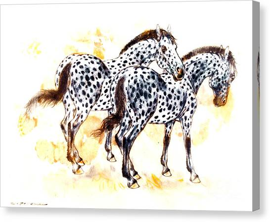 Pair Of Appaloosa Horses With Leopard Complex Canvas Print by Kurt Tessmann