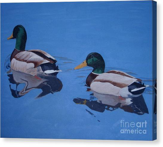 Pair Of Mallards Canvas Print
