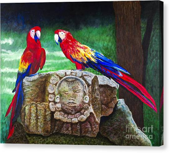 Pair Of Parrots By Barbara Heinrichs Canvas Print by Sheldon Kralstein