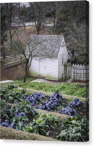 Palace Kitchen Winter Garden Canvas Print