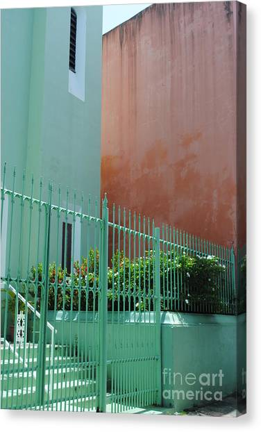 Pale Green With Pink Walls Canvas Print
