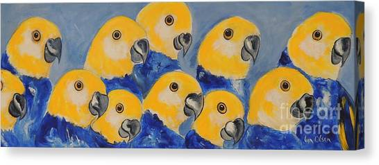 Pale Head Parrots Canvas Print