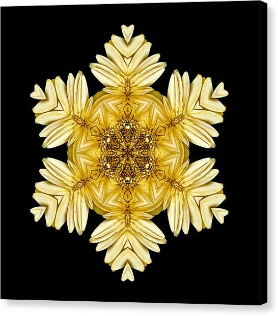 Pale Yellow Gerbera Daisy Vii Flower Mandalaflower Mandala Canvas Print