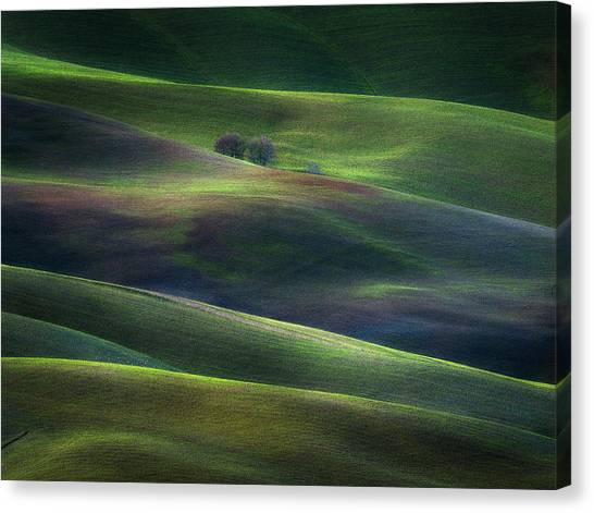 Rolling Hills Canvas Print - Palette Of Winter Dusk by Marek Boguszak