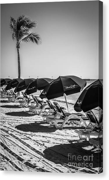West monroe canvas print palm and beach umbrellas higgs beach key west