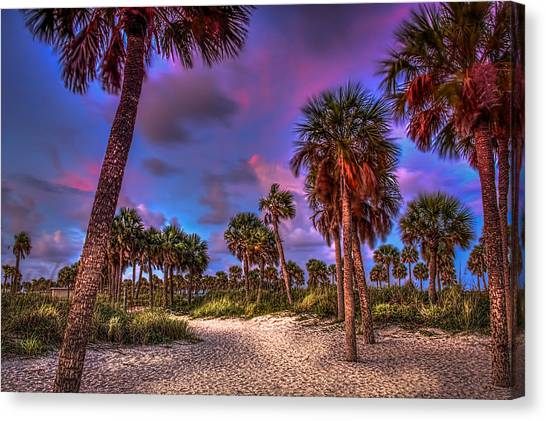 Palm Trees Sunsets Canvas Print - Palm Grove by Marvin Spates