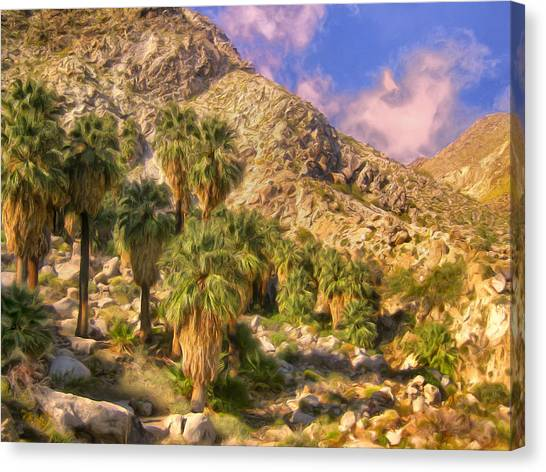 Palm Oasis In Late Afternoon Canvas Print