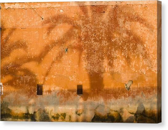 Arabian Desert Canvas Print - Palm Shadow by Mick House