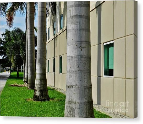 Florida Atlantic University Fau Canvas Print - Palm Soldiers by Robert Ulmer