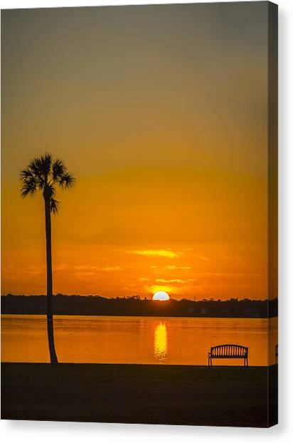 Palm Trees Sunsets Canvas Print - Palm Sun And Bench by Marvin Spates