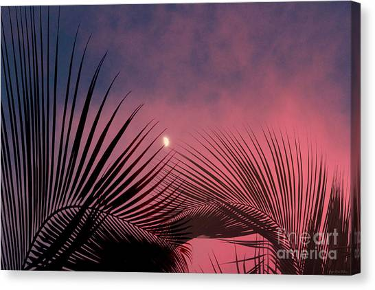 Palm Sunset Canvas Print