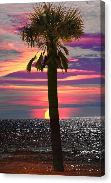 Palm Tree At Sunset Canvas Print