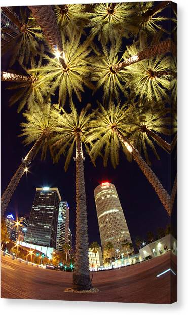 Palm Tree Fireworks Canvas Print
