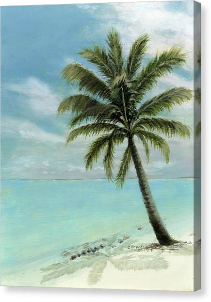 Oil On Canvas Print - Palm Tree Study by Cecilia Brendel