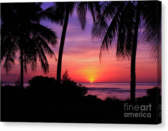 Palm Tree Sunset In Paradise Canvas Print