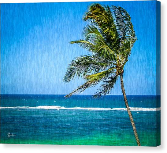 Palm Tree Swaying Canvas Print