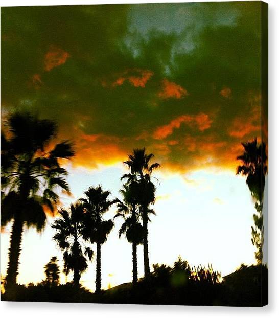 Golf Canvas Print - Palm Trees And Clouds by Krisyphotography Gash