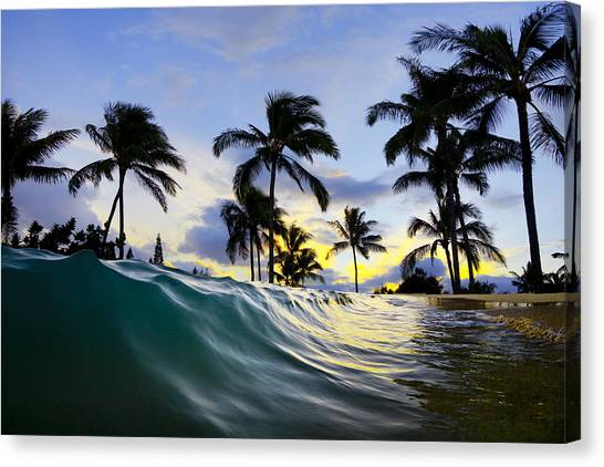 House Canvas Print - Palm Wave by Sean Davey