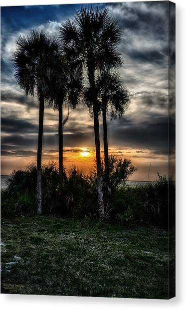 Palms At Sunet Canvas Print