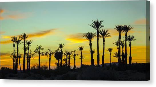 Palm Trees At Dawn Canvas Print