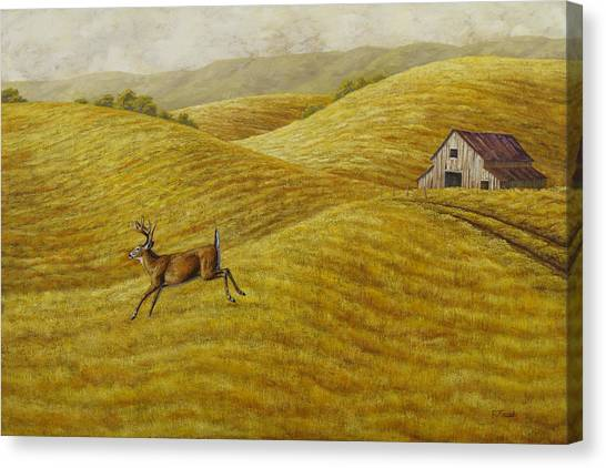 White-tailed Deer Canvas Print - Palouse Farm Whitetail Deer by Crista Forest