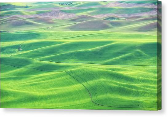 Palouse In Spring Canvas Print