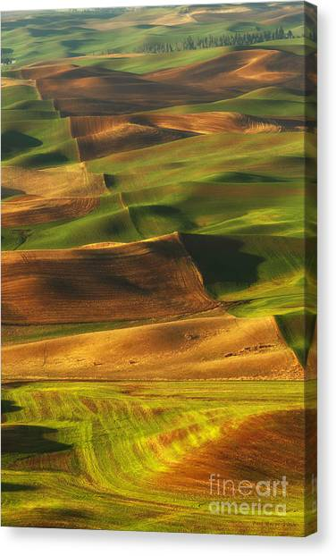 Palouse Morning Canvas Print