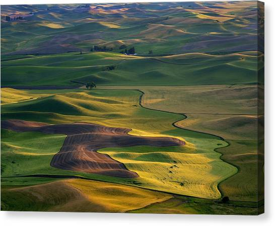 Palouse Shadows Canvas Print