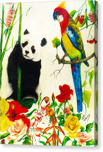 Panda And Parrot Canvas Print