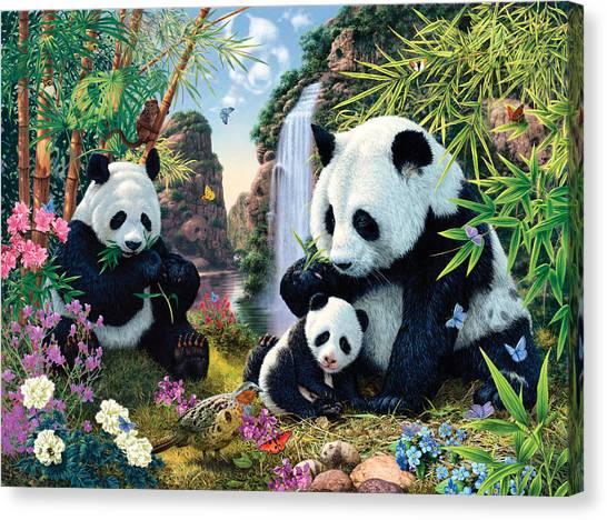 Small Mammals Canvas Print - Panda Valley by Steve Read