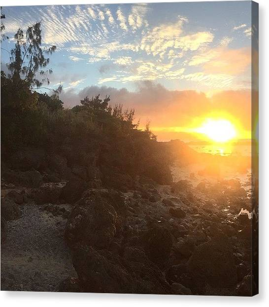 Hammerhead Sharks Canvas Print - Shark's Cove Panoramic One Of Three by Natalie Hemmerich