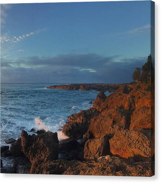 Hammerhead Sharks Canvas Print - Shark's Cove Panoramic Three Of Three by Natalie Hemmerich
