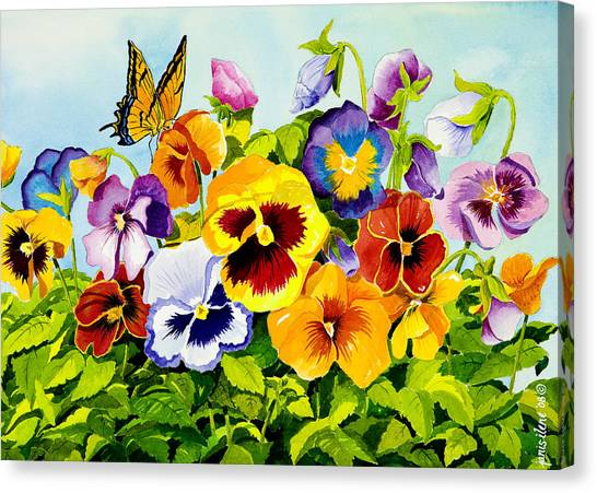 Pansies Canvas Print - Pansies With Butterfly by Janis Grau
